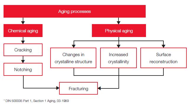 Ageing Processes - Binder